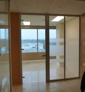 Fixed glass wall panels and frameless hinged door